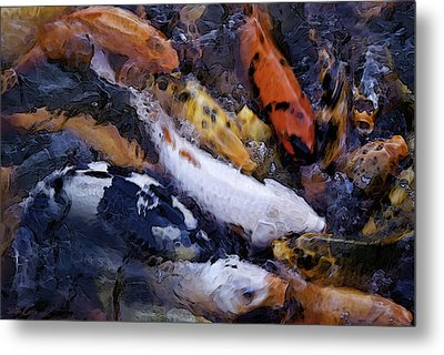 Fish Frenzy Metal Print by Justin  Curry