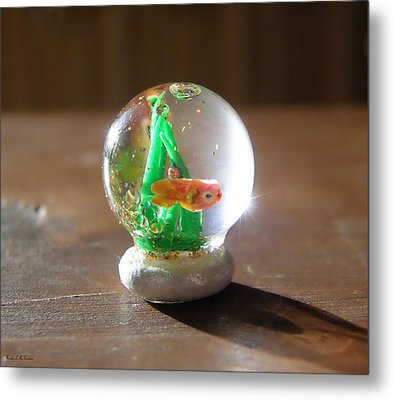 Fish Globe Metal Print by Wendy McKennon