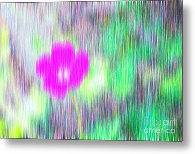 Flower In The Rain Metal Print by Silvia Ganora