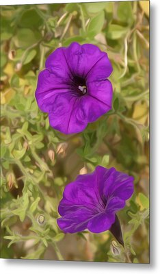 Flower Painting 0006 Metal Print by Metro DC Photography