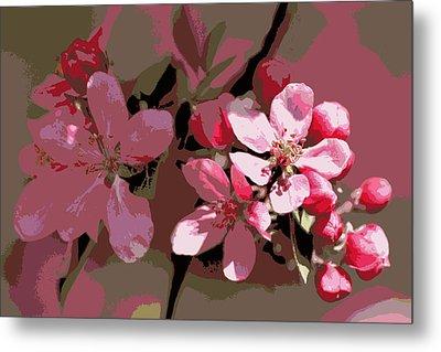 Flowering Crabapple Posterized Metal Print by Mark J Seefeldt