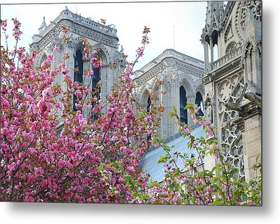 Flowering Notre Dame Metal Print by Jennifer Lyon