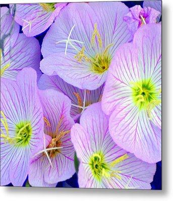 Flowers Flowers Metal Print by Marty Koch