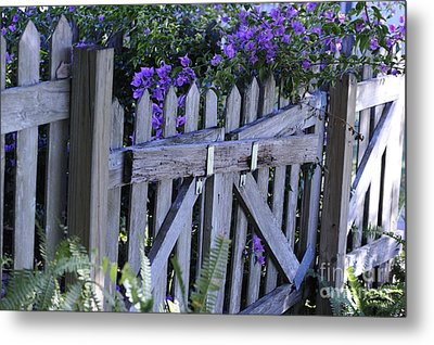Flowers On A Fence Metal Print by Nancy Greenland