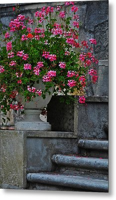 Flowers On The Steps Metal Print by Mary Machare