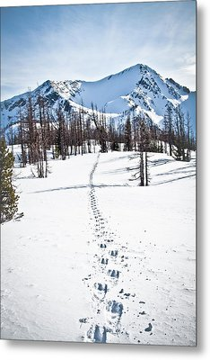 Footprints Leads To Frosty Mountain Metal Print by Christopher Kimmel