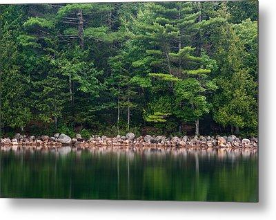 Forest At Jordan Pond Acadia Metal Print by Steve Gadomski