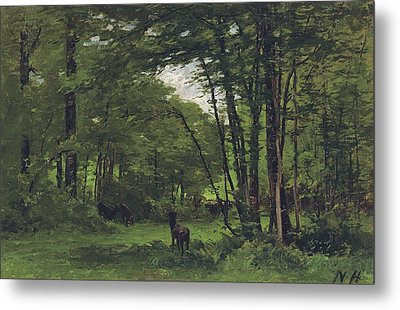 Forest Of Fontainebleau Metal Print by Nathaniel Hone