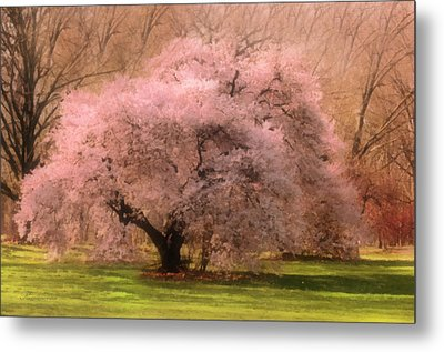 Four Seasons Magical Spring Metal Print by Georgiana Romanovna