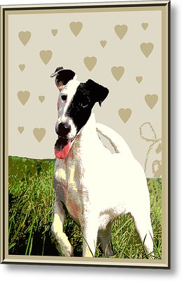 Fox Terrier Smooth Metal Print by One Rude Dawg Orcutt