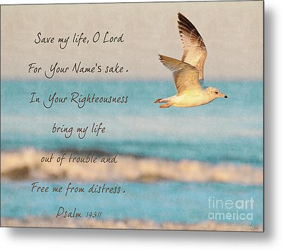 Freedom Flight Metal Print by Constance Woods