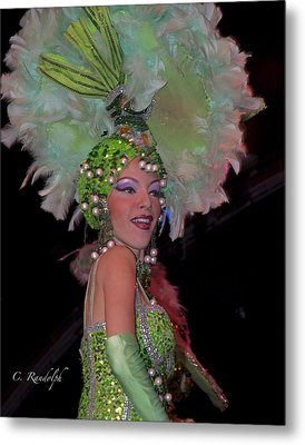 French Feathers Metal Print by Cheri Randolph