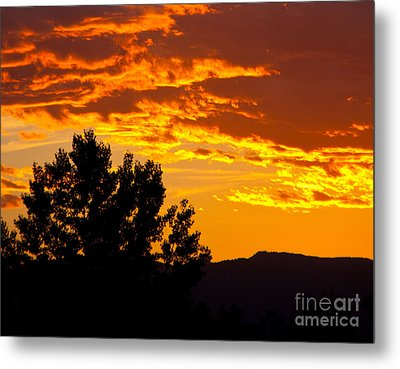Friday Night Lights Metal Print by Dana Kern