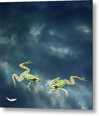 Frogs Metal Print by Christiana Stawski