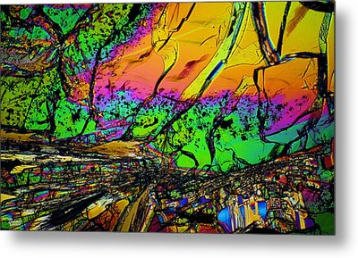 Front Row Seats 2012 Metal Print by Michael Cranford