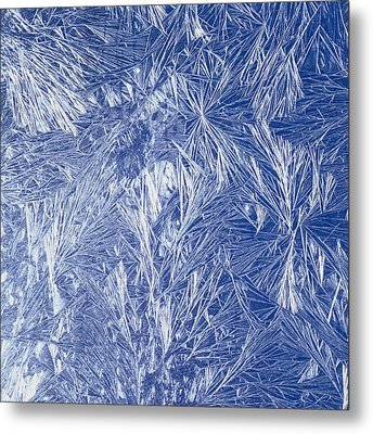 Frost Metal Print by Siede Preis