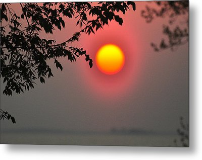 Gilded Sunrise Glow Metal Print by Rebecca Sherman