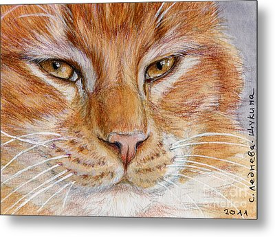 Ginger Cat  Metal Print by Svetlana Ledneva-Schukina
