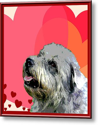 Glen Of Imaal Terrier Metal Print by One Rude Dawg Orcutt