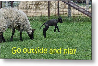 Go Outside And Play Metal Print by LeeAnn McLaneGoetz McLaneGoetzStudioLLCcom