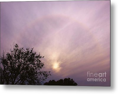 God's Masterpiece Metal Print by Carolyn Wright