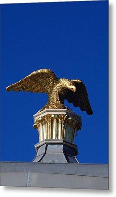 Golden Eagle Metal Print by Lisa Phillips