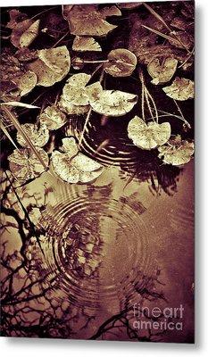 Golden Pond Metal Print by Silvia Ganora