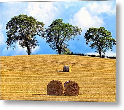 Golden Three Plus Thee Metal Print by Patrick MacRitchie