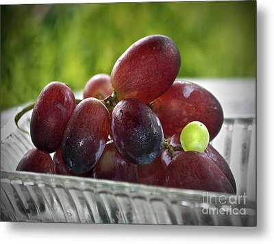 Grapes Metal Print by Gwyn Newcombe