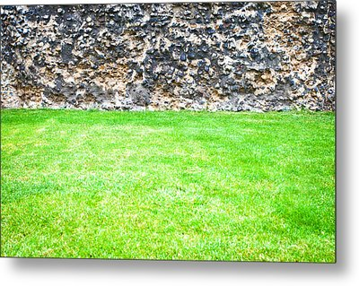 Grass And Stone Wall Metal Print by Tom Gowanlock