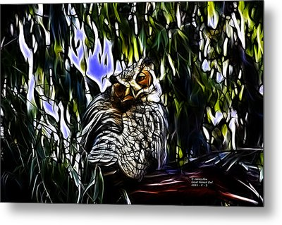 Great Horned Owl - 4228 - Fractal - S Metal Print by James Ahn