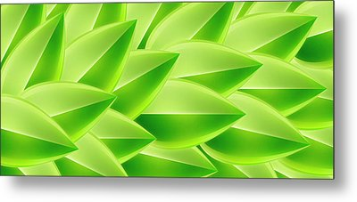 Green Feathers, Full Frame Metal Print by Ralf Hiemisch