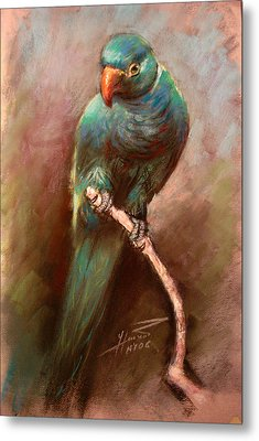 Green Parrot Metal Print by Ylli Haruni