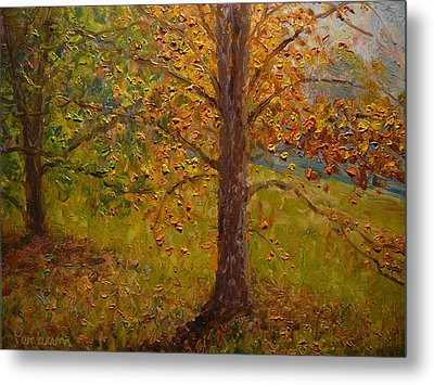 Green Turns To Gold Metal Print by Terry Perham