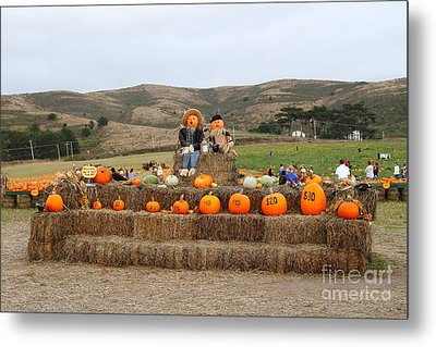 Halloween Pumpkin Patch 7d8478 Metal Print by Wingsdomain Art and Photography