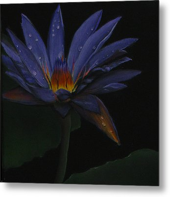 Hawaiian Water Lily - Purple Metal Print by Sherry Robinson