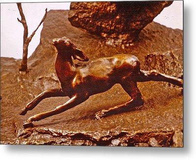 He Who Saved The Deer - Deer Detail Metal Print by Dawn Senior-Trask