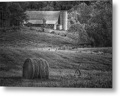 Hidden Away In Black And White Metal Print by Mary Timman