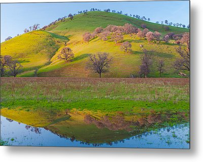 Hill Reflection In Pond Metal Print by Marc Crumpler