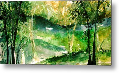 Hills Of Arkansas Metal Print by Robin Miller-Bookhout