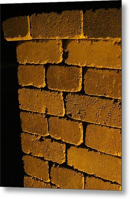 Holding It All Together Metal Print by Guy Ricketts