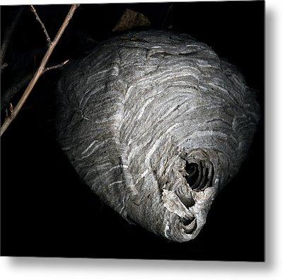 Hornet Nest Metal Print by David Kleinsasser