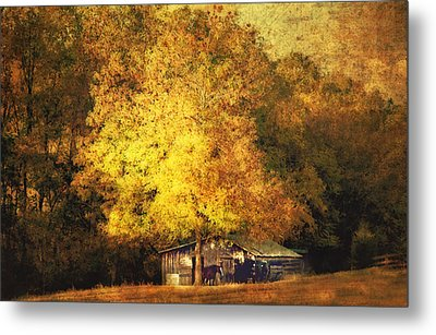 Horse Barn In The Shade Metal Print by Kathy Jennings