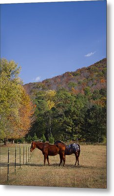 Horses And Autumn Landscape Metal Print by Kathy Clark