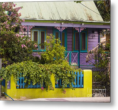 House Of Colors Metal Print by Rene Triay Photography