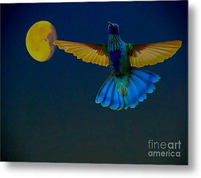 Hummingbird Moon Metal Print by Al Bourassa