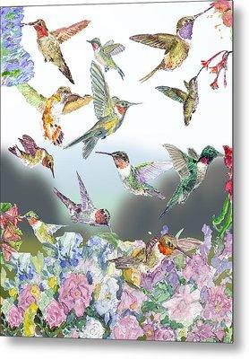 Hummingbirds Galore Metal Print by Barry Jones