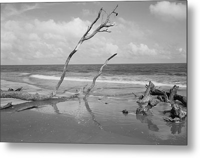Hunting Island State Park Metal Print by Donnie Smith