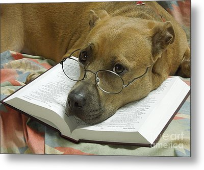 I Read My Bible Every Day Metal Print by Renee Trenholm