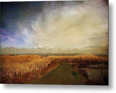 If I Could See Into The Future Metal Print by Laurie Search